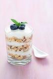 Glas van gelaagd yoghurtdessert stock afbeelding
