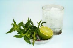 Glas van mojito met kalk en munttwijg Stock Foto