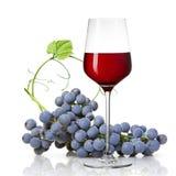 Glas van rode die wijn en druif op wit wordt geïsoleerd Royalty-vrije Stock Afbeelding