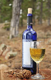 Glas van witte wijn en een fles Royalty-vrije Stock Foto's