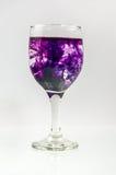 Glas voll vom Wasser mit Tintenfarbe Lizenzfreie Stockfotos