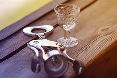 Glas voor gefacetteerde alcohol Stock Fotografie