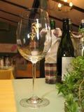 Glas voor wijn Royalty-vrije Stock Foto's
