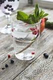 Glas Wasser mit Eis-, Minzen- und Granatapfelsamen auf einem hölzernen Stockbild