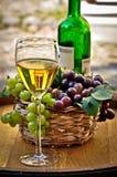 Glas Weißwein Lizenzfreies Stockbild