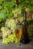 Glas Weißwein und Weintraube auf altem Holztisch agai stockfotografie
