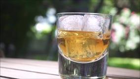 Glas whisky met ijsblokjes op bokehachtergrond stock footage