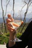 Glas wijn Royalty-vrije Stock Afbeelding