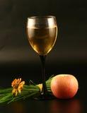 Glas wijn, appel en gras Stock Fotografie