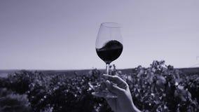 Glas wijn in de hemel stock video