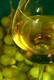 Glas wijn en druiven Stock Foto's