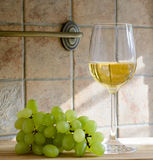 Glas wijn en druiven stock foto