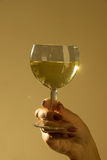 Glas of wine Stock Photography