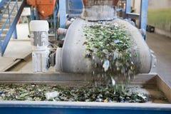 Glasafval in het recycling van faciliteit Glasdeeltjes Stock Foto