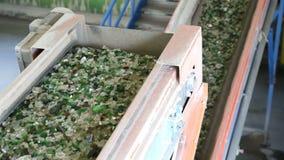 Glasafval in het recycling van faciliteit Glasdeeltjes in een machine lijn stock footage