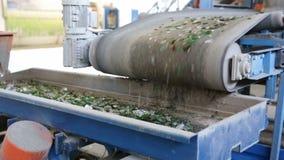Glasafval in het recycling van faciliteit Online glasdeeltjes stock footage