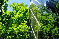 Glasbürohaus mit grünen Reflexionen Stockfoto