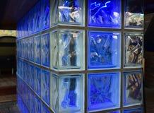 Glasblock-Wanddetail Stockbild