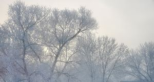 Glaserade Misty Landscape royaltyfri bild