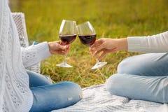 Glases que tintinean con el vino en una comida campestre Imagen de archivo