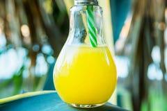Glasflaska för ljus kula med nytt pressande orange tropiska frukter Juice Standing på Agavebladet Solljus i bakgrund Royaltyfri Foto