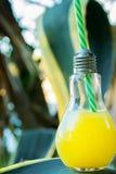 Glasflaska för ljus kula med nytt pressande orange tropiska frukter Juice Standing på Agavebladet Solljus i bakgrund sjösida Arkivbild
