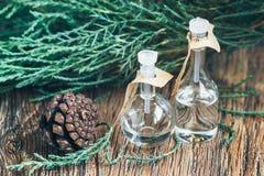 Glasflaskor av nödvändig olja med sörjer kottar på träbakgrund Royaltyfria Bilder