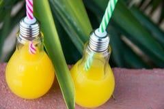 Glasflaskor för ljus kula med ny orange fruktsaft för tropiska frukter på röd stenbakgrund på solnedgången Grön palmbladlövverk Arkivbilder