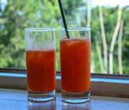 Glasflaskor för vattenmelonfruktsaft itu royaltyfri bild