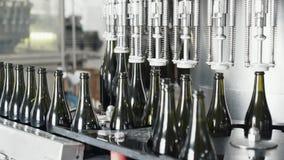 Glasflaskor på den automatiska transportörlinjen på champagne- eller vinfabriken Växt för att buteljera alkoholdrycker stock video