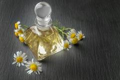 Glasfles met etherische olie en verse kamillebloemen Stock Afbeelding