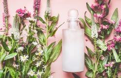 Glasfles met natuurlijk cosmetische product: lotion of shampoo met verse kruiden en bloemen op roze achtergrond, hoogste mening S Royalty-vrije Stock Afbeelding