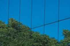 Glasgebäude mit Baumreflexion Stockfotos