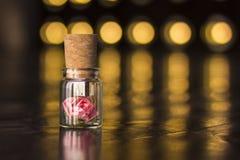 Glasgefäß gebunden mit einem Band Stopper USB-Blitz-Antrieb, ursprünglicher greller Antrieb Rose in einer Flasche Glas-USB-Blitz- Lizenzfreie Stockfotografie