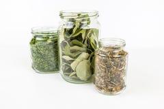 Glasgläser mit verschiedenen Typen des Tees lizenzfreies stockfoto