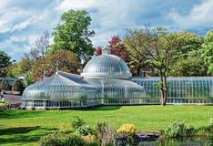 Glasgow Botanic Gardens arkivbild