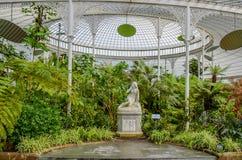 Glasgow Botanic Gardens, Escócia Fotografia de Stock