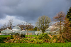 Glasgow Botanic Gardens, Scotland Royalty Free Stock Photography