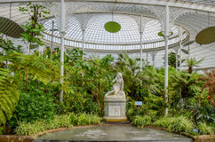 Glasgow Botanic Gardens, Scotland Stock Photography