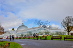 Glasgow botanic gardens, Scotland. Glasgow botanic gardens is beautifully preserved filled with exotic plant life, from arid lands and tropical rainforests alike stock photos