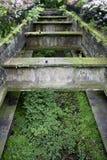 Glasgow Botanical Gardens Stock Photo
