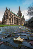 Glasgow Cathedral Cobbles immagine stock libera da diritti