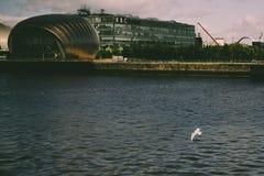 Glasgow IMAX Theatre z Seagull Obraz Royalty Free