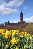 Glasgow, l'université au printemps Photographie stock