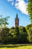 Glasgow University Bell Tower Royaltyfri Fotografi