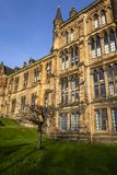 Glasgow University on a sunny day with a tree outside stock image