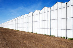 Glashaus Lizenzfreie Stockbilder