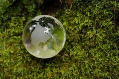 Glasheldere bol op groen mos stock foto's