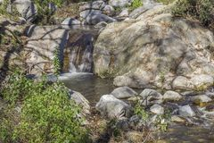 Glasheldere stroom bij San Gabriel Mountain Stock Afbeelding