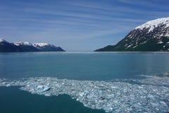 Glasier в Аляске в лете Стоковые Изображения RF
